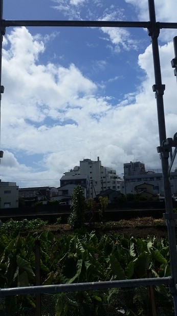 台風19.20号の影響