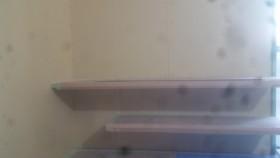 リビング周りの壁プラスターボード貼り