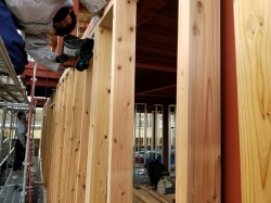外周の柱、間柱施工