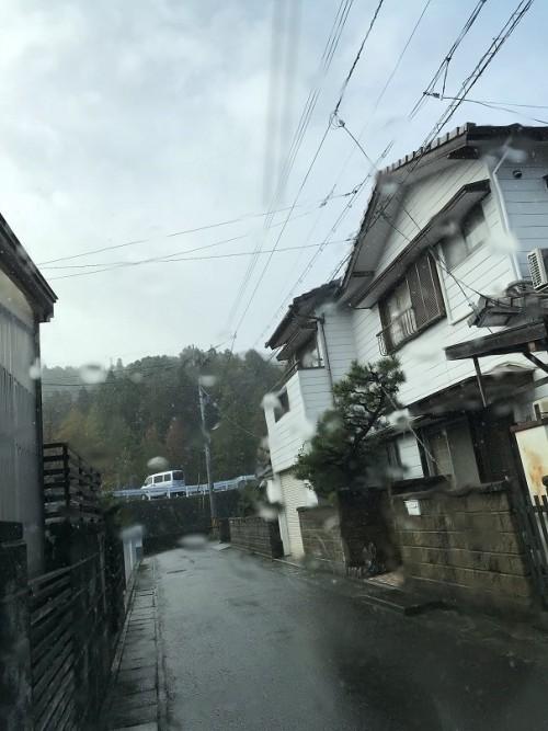 雨が降ってきた~