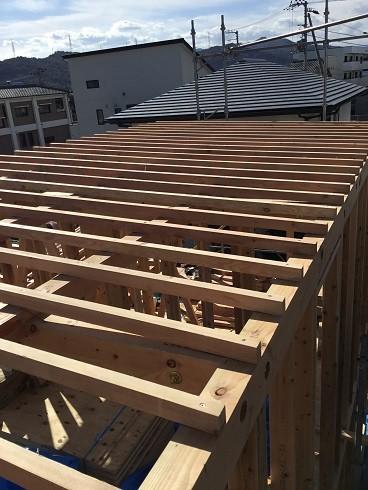 大屋根の垂木施工
