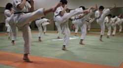 空手の練習